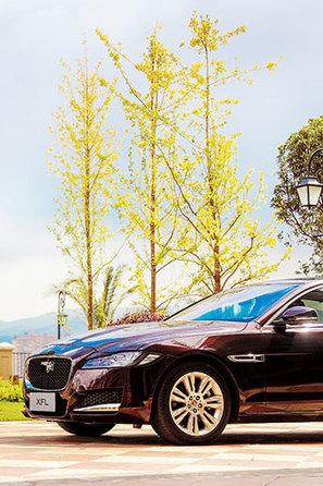 感触优雅仪式 Jaguar XFL